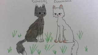 Мои персы? Рисунки Котов-воителей. ❤