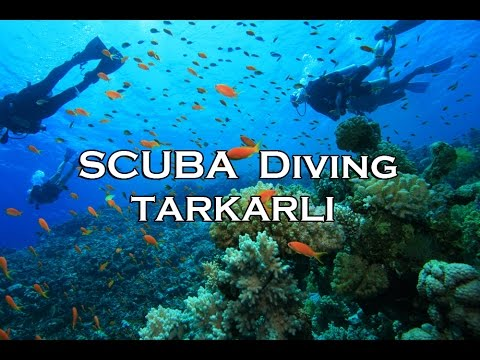 Scuba Diving Tarkarli - Malvan Maharashtra India Hindi - Marathi Vlog