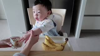 9개월 아기# 이유식 먹기, 닭고기 브로콜리 당근죽| …