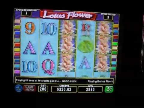 Lotus Flowers Slot Machine Electronic Blackjack Casino