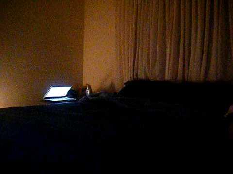 Bedroom Boom Ying yang  Avant  YouTube