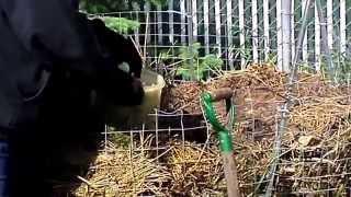 Family Farmer  Wire Compost Bin