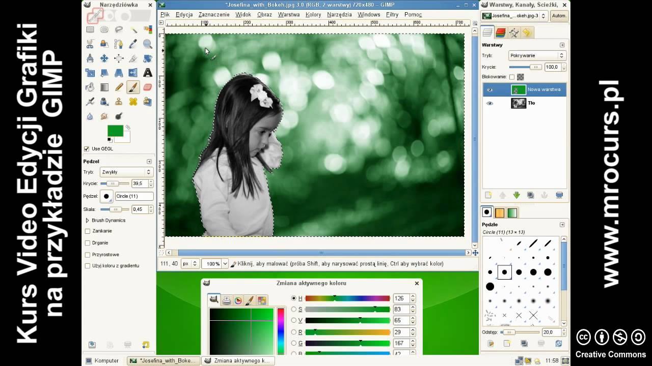Kolorowanie Czarno Białych Zdjęc 12 Kurs Video Edycji Grafiki