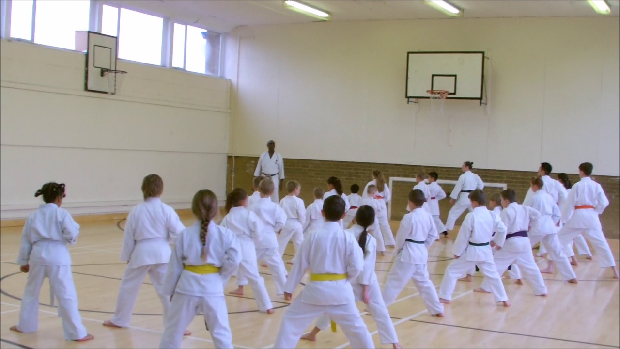 Martial arts stevenage