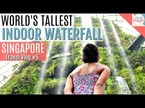 Singapore Cloud Forest & Gardens By the Bay - Singapore Travel Vlog #5