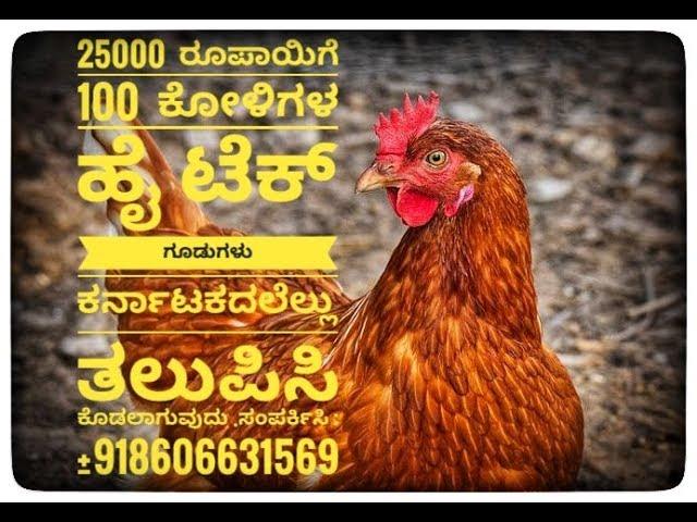 ???? ????, Bv380 Layer cage Karnataka. chicken farm. +919895359239