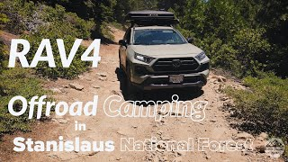 RAV4 TRD Camping Weekend: Expl๐ring Stanislaus National Forest