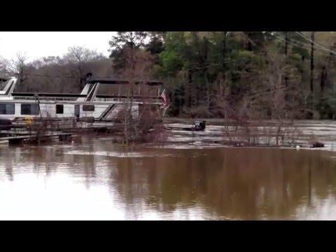 Historic Flooding - Bayou D