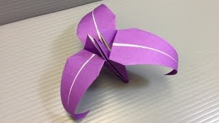 Traditional Origami Three Petal Iris Flower