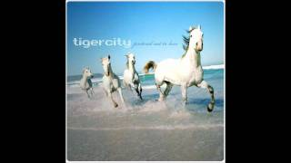 Tigercity - Are You Sensation