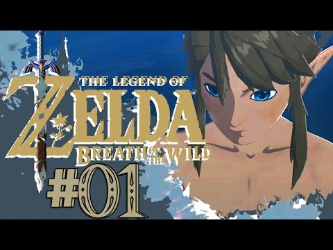 The Legend of Zelda: Breath of the Wild - Part 1 Awakening (Nintendo Switch)