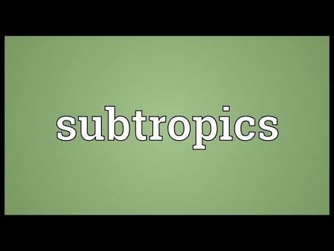 Subtropics Meaning