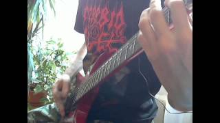 Carcass - Genital Grinder & Regurgitation Of Giblets (Guitar Cover)