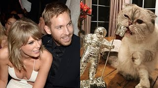 Calvin Harris Calls Taylor Swift