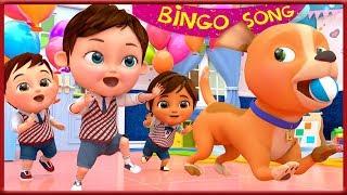 🔴 Bingo School Dog Song , Baby Shark , The Wheels on the Bus , Johny Johny Yes Papa [HD]