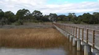 Apalach Series/Apalachicola, Florida 2009