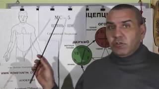 Контроль Половых органов Мужских и Женских. Видео 2.