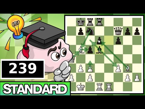 Standard Chess #239: IM Bartholomew vs. Neverness (Petroff Defense)