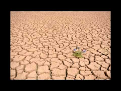 Drought hits most Indonesian provinces due to El Nino