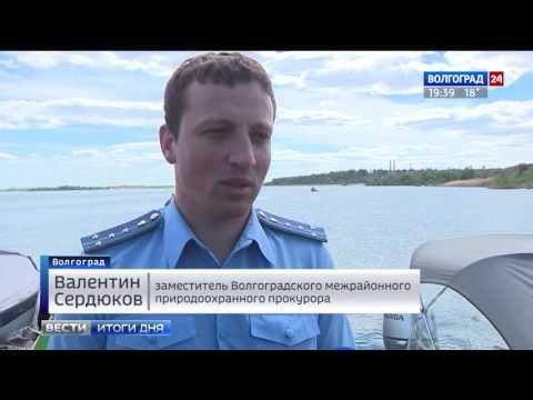 Инспекторы рыбоохраны напомнили волгоградцам о правилах лова сельди