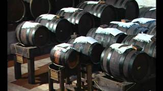 Traditional Balsamic Vinegar Of Modena P.d.o.