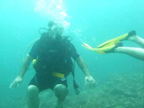 ali al sader scuba diving
