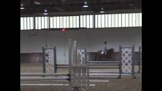 Mclain Ward clinic - gymnastics