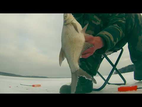 зимняя рыбалка на плотву подводная съемка