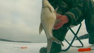 Зимняя рыбалка. Ловля леща и плотвы. Подводная камера(Зимняя рыбалка. Ловля леща и плотвы. Подводная камера Подводные съемки рыбалки зимой на водохранилище...., 2016-02-27T16:40:02.000Z)