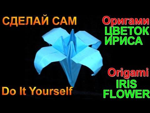 Origami iris flower.