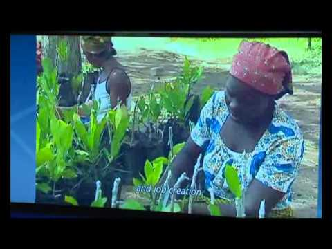 Le NEPAD la baguette magique de l'Afrique, ne pas très efficace