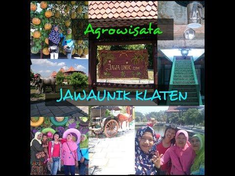 Sejuknya Agrowisata Jawaunik.com Klaten