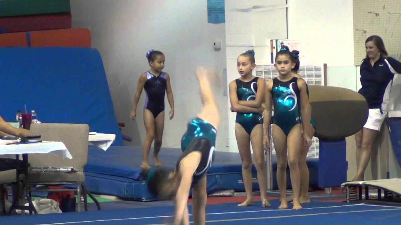 texas level 9 gymnastics state meet quotes