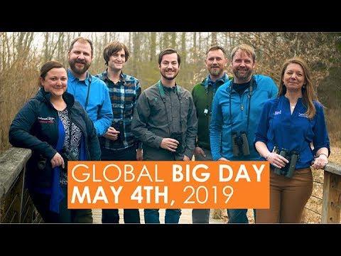 Big Day 2019 - The Gulf Coast
