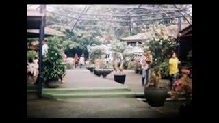 10 Tempat Wisata di Cirebon yang Wajib Dikunjungi versi Alam Indonesia