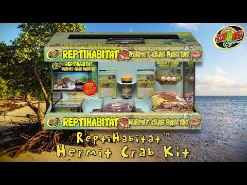Zoo Med 10 Gallon Reptihabitat Hermit Crab Kit Youtube