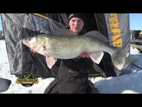 Ice Fishing Gigantic Greenback Walleye In Manitoba - Manitoba Master Angler Minute