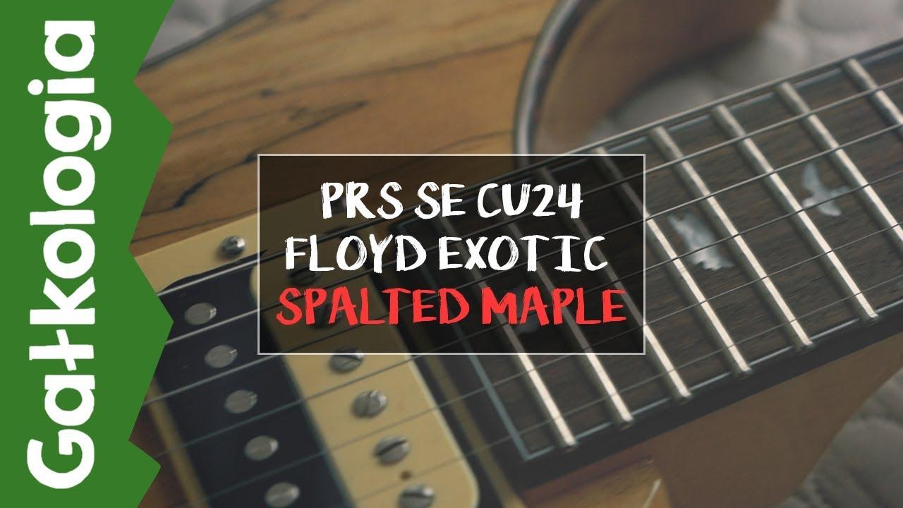 PRS SE 24 Custom Floyd – SPALTED MAPLE