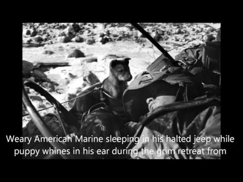 U.S. Marines in Korean War; Photos by David Duncan, 1950