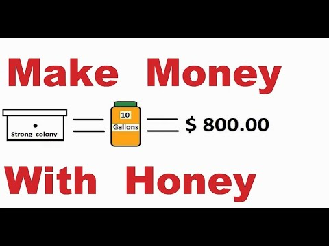 How much money you can make with honey bees. Natural raw honey production