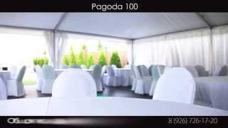 Pagoda 100