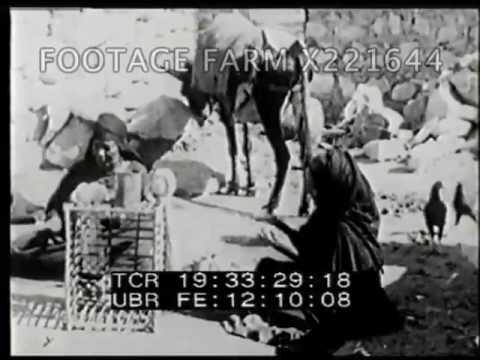 Exotic Egypt - 221644 04X | Footage Farm