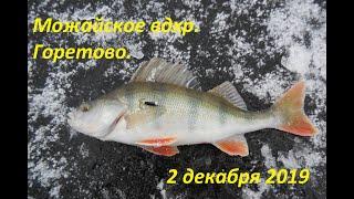 Можайское вдхр Первый лед в Горетово Видеоотчёт 02 12 2019 года