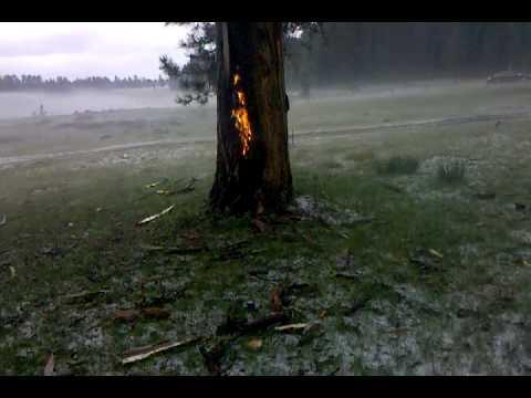 Lightning struck tree big lake az youtube for Big lake az fishing report