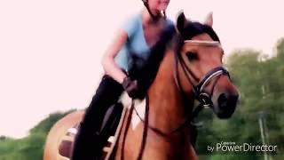 Минутка конного спорта😜