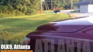 Holding Position While We Drive Away! | Rottweiler | Atlanta Dog Trainers