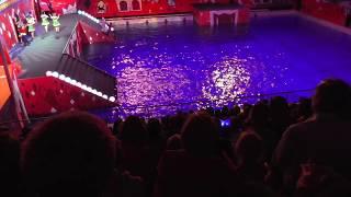 водное шоу сказка о царе салтане 02.01.2018