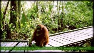Behind The Scenes KukuBimaEner-G! : [3] Kalimantan Journey