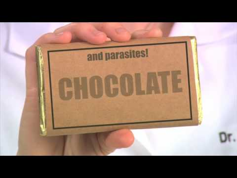 the-science-of-chocolate---food-science