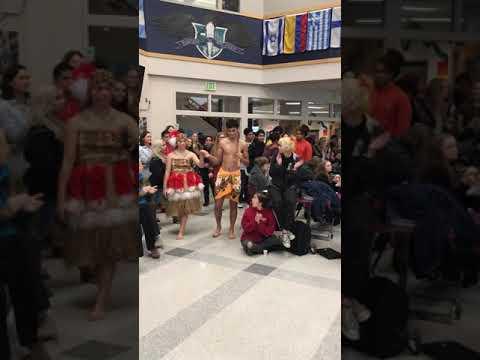 Auburn Riverside High School Cultural Day